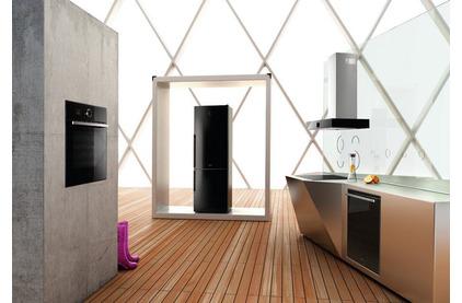 Холодильник двухкамерный Gorenje RK61FSY2B2